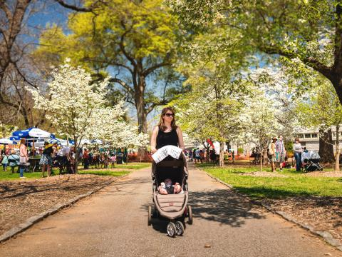 Families enjoying the Atlanta Dogwood Festival under blooming dogwood trees