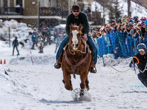 在西黄石的 Skijor West Championships 锦标赛期间体验马拉雪橇