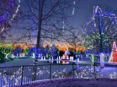 俄亥俄州哥伦布动物园和水族馆的 Wildlights 动物造型灯展