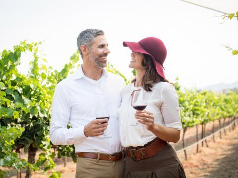 在加利福尼亚州蒂梅丘拉谷的葡萄种植园里品尝葡萄酒的一对爱侣