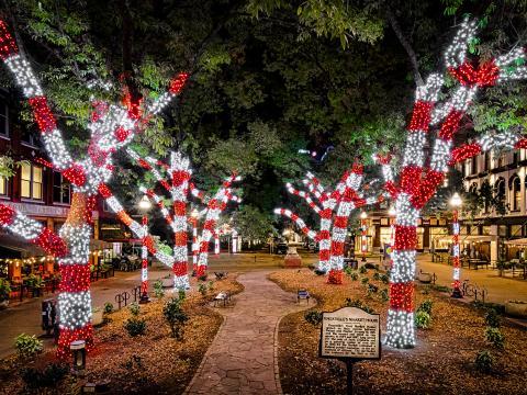 照亮田纳西州诺克斯维尔的节日灯光