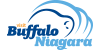 Official Buffalo Travel Sites
